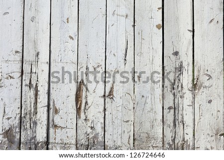 Vintage or grungy white background of natural wood or wooden old texture as a retro pattern wall.