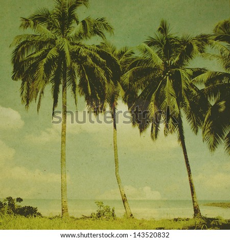 Vintage palm background in summer.Vintage concept - stock photo