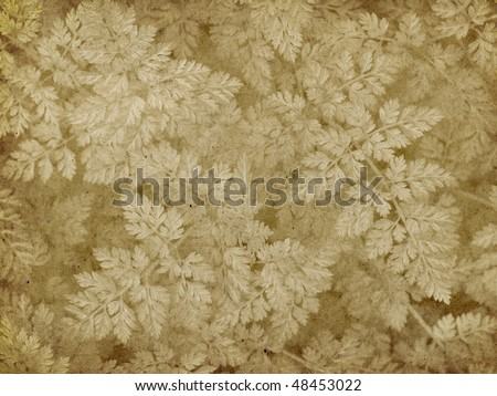Vintage Paper with Lichen Imprint - stock photo