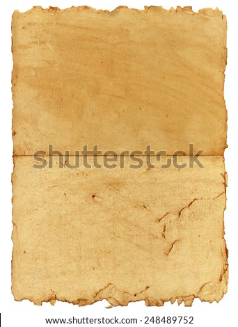 Vintage papyrus page close up - stock photo