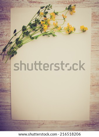 vintage photo of blank picture frame paper with plants on wooden table - stock photo