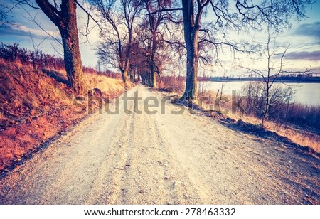 Vintage photo of calm countryside with rural sandy road. Agricultural landscape with old fashioned colors - stock photo