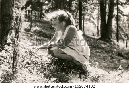 Vintage photo of little girl picking blackberries in forest, fifties - stock photo