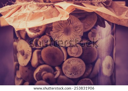 Vintage photo of preserved food in glass jar, on a wooden shelf. Marinaded mushrooms - stock photo