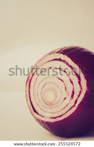 Vintage photo of red onion isolated on white background - stock photo