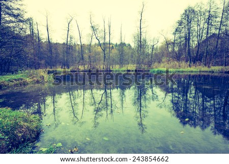 Vintage photo of river in autumnal forest - stock photo