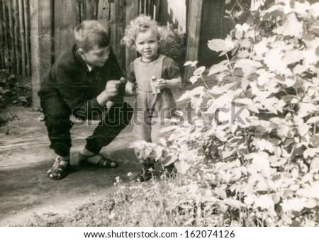 Vintage photo of siblings, fifties - stock photo
