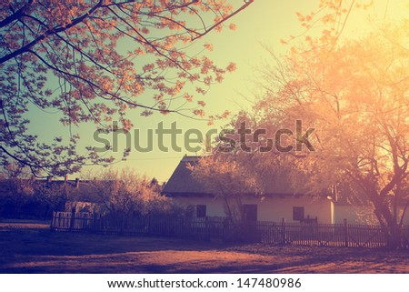 Vintage photo of small house in autumn forest - stock photo