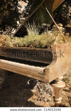 Vintage picture with flowers that grows inside piano. - stock photo