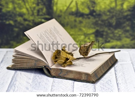 Vintage poetry book with dead rose; lying on table against countryside background - stock photo