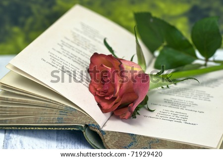 Vintage poetry book with red rose; lying on table against countryside background - stock photo