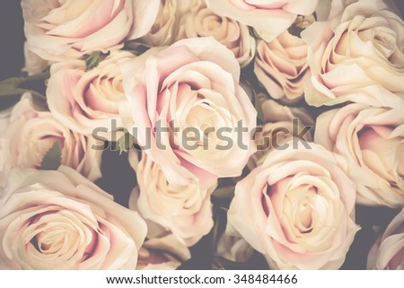 vintage roses as background - stock photo