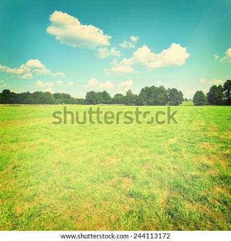 Vintage rural landscape - stock photo