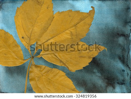 vintage shabby background with autumn leaves