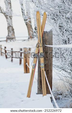 Vintage Skis in Winter Scene - stock photo