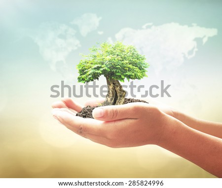 Vintage style. Human hands holding big plant with soil on blurred world map of clouds over beautiful ocean or forest or desert sunset background. Ecology concept. World Environment Day concept. - stock photo