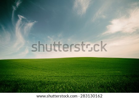 Vintage style image of green grass and blue sky background