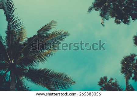 Vintage stylized palm tree over sky background - stock photo