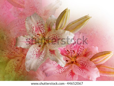 vintage stylized romantic picture with pink lilies - stock photo