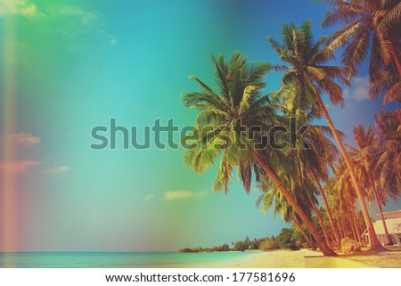 Vintage stylized tropical beach with palm trees - stock photo