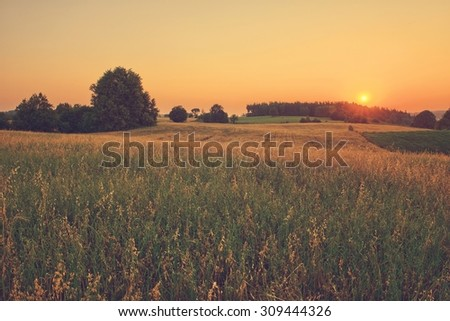 Vintage sunset over summer fields - stock photo