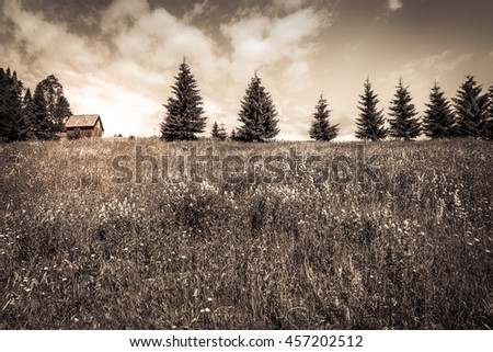 Vintage sunset over wooden cottage and meadow - Picturesque vintage image with the sun setting down over a wooden hut, the flowery meadow and the line of pine trees on the Carpathian mountains. - stock photo