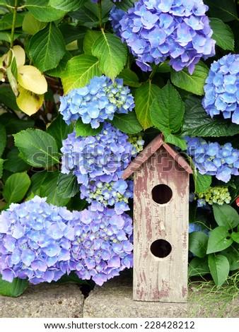 Vintage Two Hole Peeling Paint Bird House on Stones with Blue Hydrangea Background - stock photo