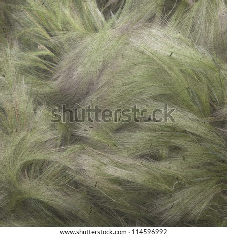 vintage wallpaper background with grass - stock photo
