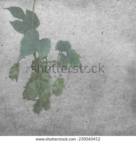 vintage wallpaper background with hop - stock photo