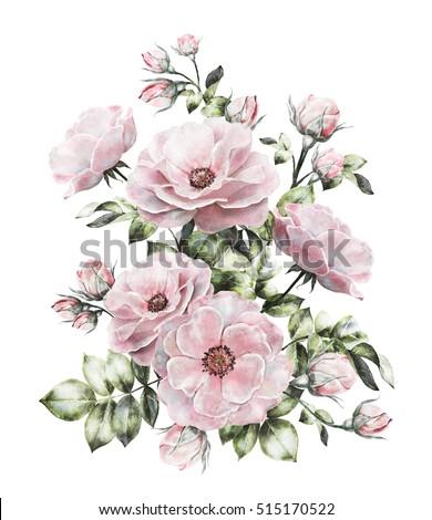 Vintage watercolor flowers floral illustration flower stock vintage watercolor flowers floral illustration flower in pastel colors pink rose branch mightylinksfo
