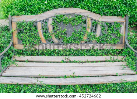 Vintage wood bench in garden. Closeup vintage wooden bench in beautiful pattern put against in bush and green tree fence with grass covered background in green park - stock photo