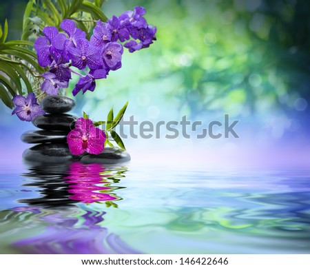 violet orchids, black stones on the water  - stock photo