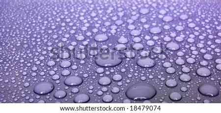 Violet Water Drops - stock photo