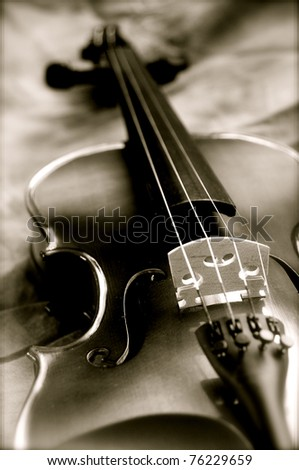 Violin 7 - stock photo