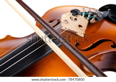 Violin close up isolated on white background. - stock photo