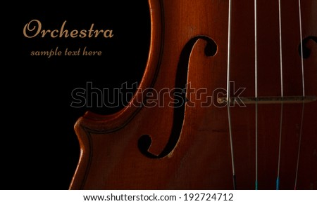 Violin detail in ambient light on black background with copy space - stock photo