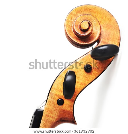 Violin isolated on white background Violin close up music instrument of orchestra. - stock photo