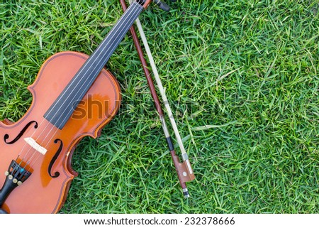 violin lying on green meadow