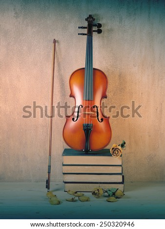 Violin of fiddle on books bunch with dry roses still life style - stock photo