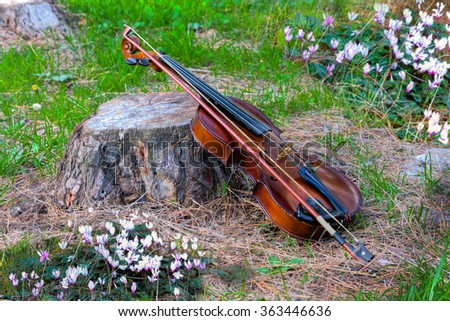 Violin on a stump against the glade of forest flowers - stock photo