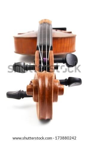 Violin on white background  - stock photo