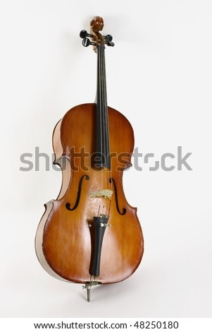 Violoncello on a white background - stock photo