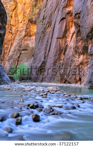 Virgin River Narrows aglow with reflected color from sunlit cliffs and blue sky overhead, Zion National Park, Utah, USA