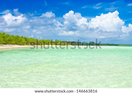 Virgin tropical beach at Coco Key (Cayo Coco) in Cuba (image taken from the water) - stock photo