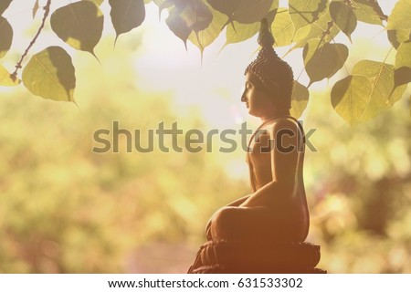 buddhistbuddha