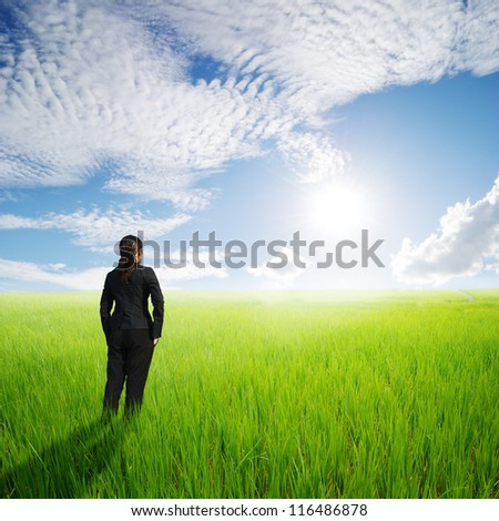 Vision business woman in green rice fields an sunset