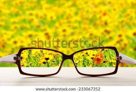 Vision concept. Eye glasses on wooden table outdoors - stock photo