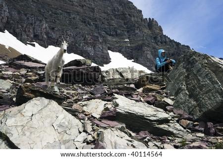 Visiting the Rockies - stock photo