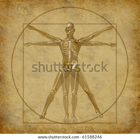 vitruvian-human-diagram-grunge-medical