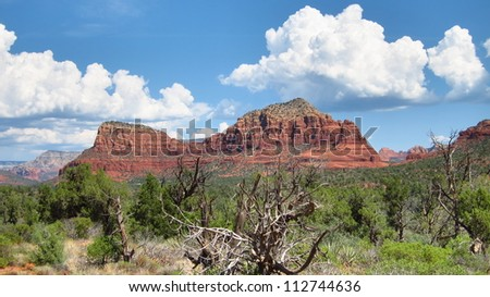 Vivid blue Sedona, Arizona sky with mountains, trees, cacti, and puffy clouds - stock photo